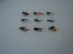 Picture of Custom Flies Assortment # 493