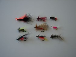 Picture of Custom Flies Assortment # 491