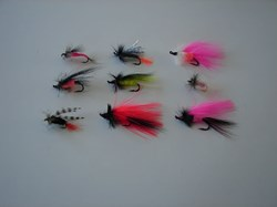 Picture of Custom Flies Assortment # 492