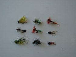 Picture of Custom Flies Assortment # 495